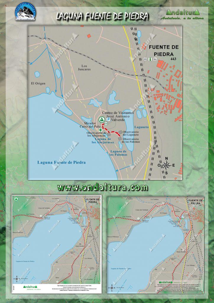 Rutas de Senderismo, Cicloturisticas y de BTT por la Laguna de Fuente de Piedra